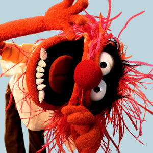character_themuppets_animal_9d53d6e7